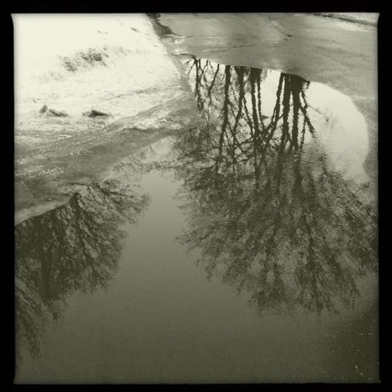 Puddles.