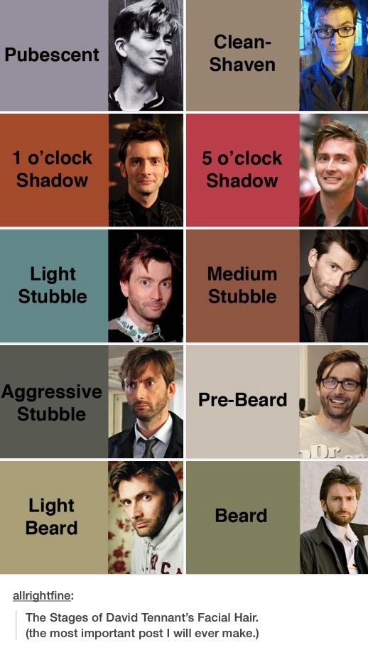 The stages of David Tennant's facial hair. A very important pin.