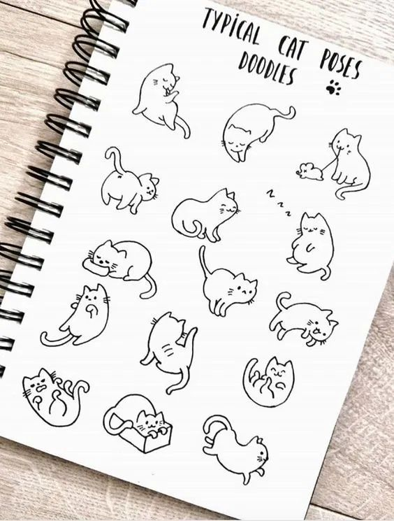 55 Cool Easy Things To Draw In Your Sketchbook In 2020 Cat