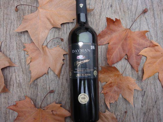 Os vinhos feitos a partir da uva Tannat combinam bem com paletas de cordeiro. Nesse exemplo, o uruguaio Dayman 2003.