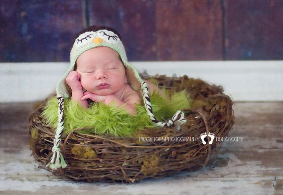 newborn in nest...need to make one of these.