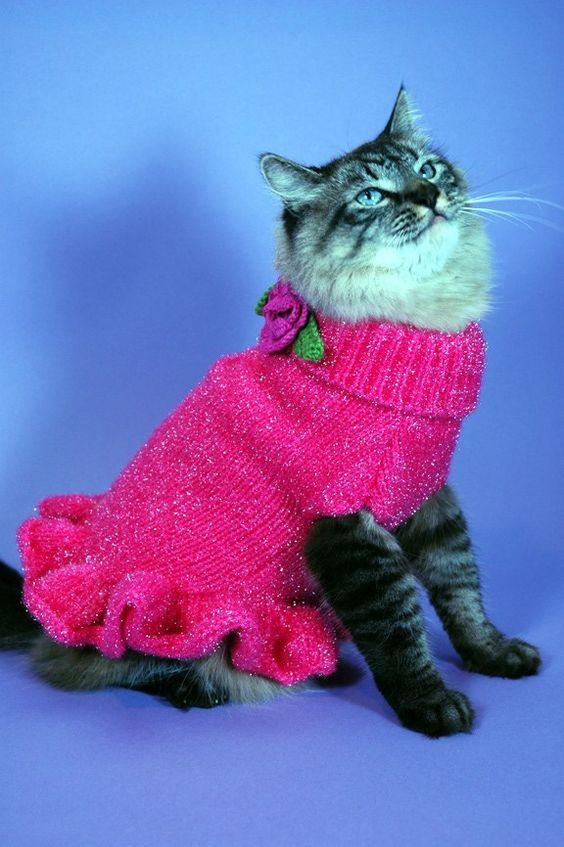 Images of cats dresses | cat clothes, cat dresses, cat sweaters