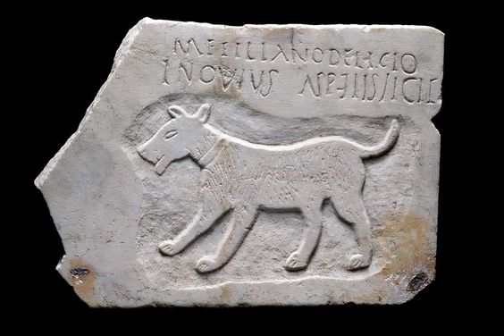 Ancient roman gravestone, 1-2 centuty AD, for the beloved dog. Probably is a children hand-made for memorial of his favorite pet.