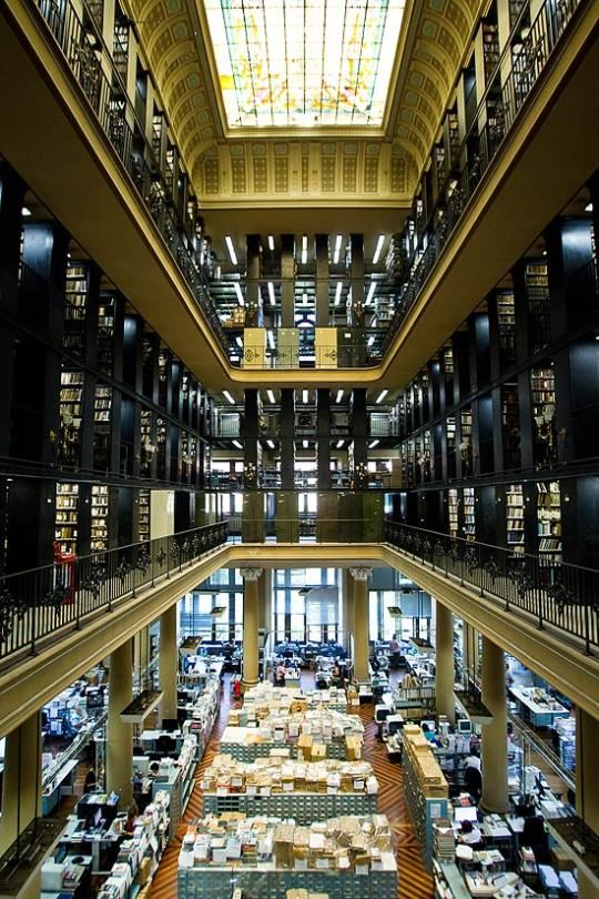 The Biblioteca Nacional Do Brasil English National Library Of