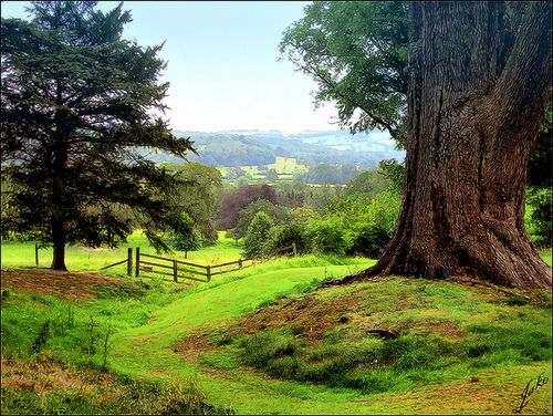 The most beautiful english countryside landscape pictures buying the most beautiful english countryside landscape pictures sciox Images