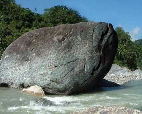 Natural rock formation - Fish rock