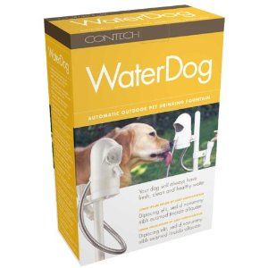 water dog auto outdoor pet drinking fountain - amazon link