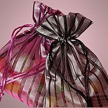 Striped Multi-Line Transparent Fabric Bags