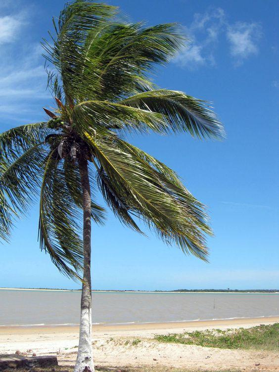 Linda paisagem da Praia Barra de Caravelas.