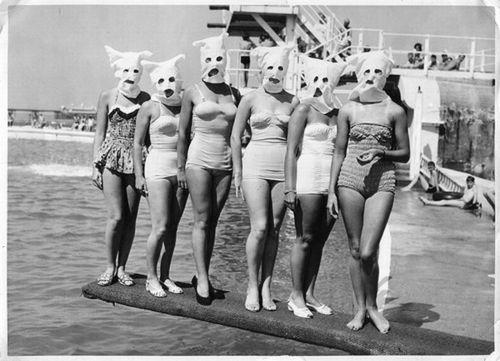 Resultado de imagem para ku klux klan bathing suits