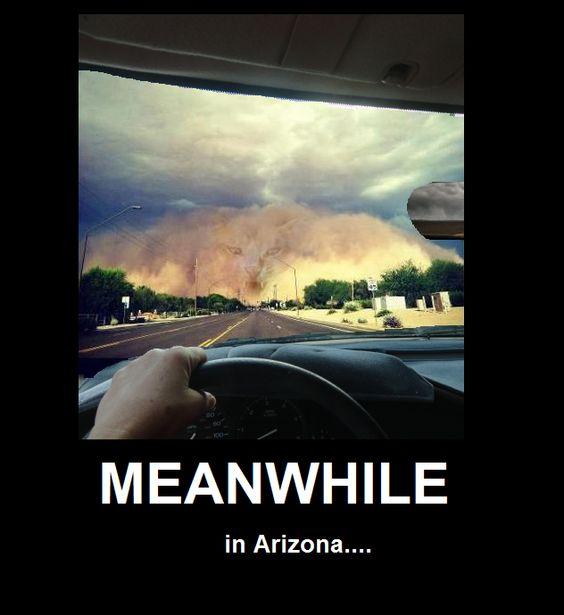 Meanwhile in Arizona....LOL