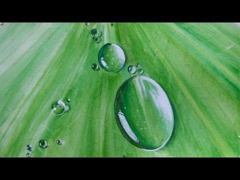 How To Paint Realistic Water Drops In Acrylic Youtube 수채화법