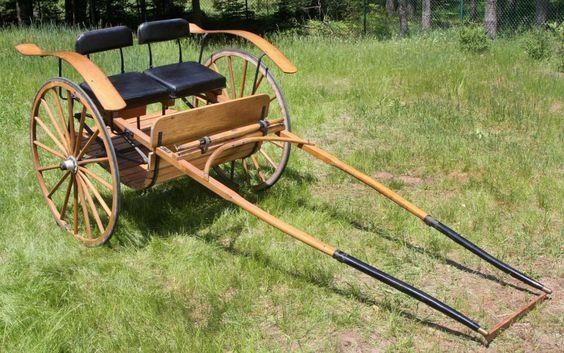 Oak Cart Horse Buggy Trotter Horses Pinterest