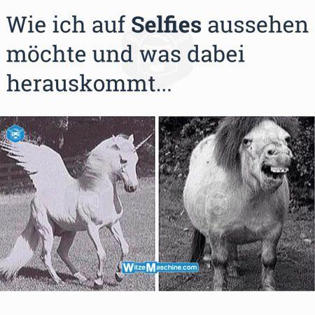 Selfie Fail - Pferdegesicht Einhorn - Fail Bilder
