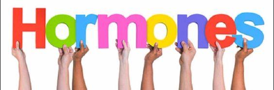 Hoe hormonen ons gewicht bepalen
