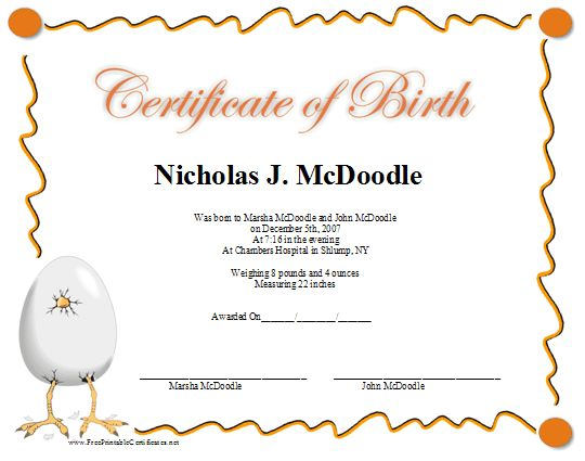 A printable birth certificate in shades of pink for a baby girl – Baby Birth Certificate Template