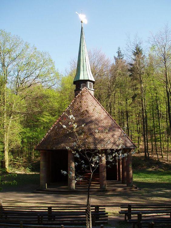 Winterkirchel, Pfälzerwald
