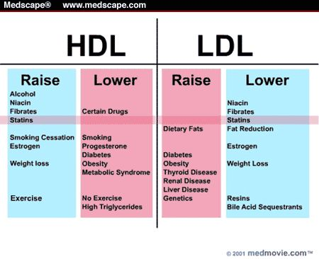 raise hdl lower ldl healthy about food