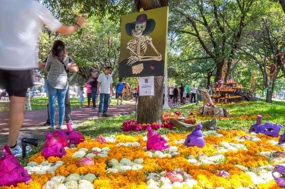 Día de Muertos exhibición de altares de muertos en San Pedro de Pinta, San Pedro GG NL México