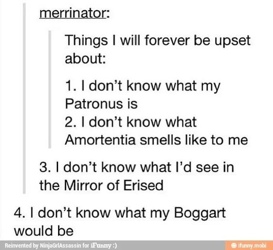 Potter fans will understand