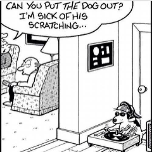 Dog Scratch Vinyl Records In Illustrations Pinterest