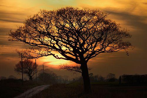 Sunset over Ringstead in Norfolk 4/3/13