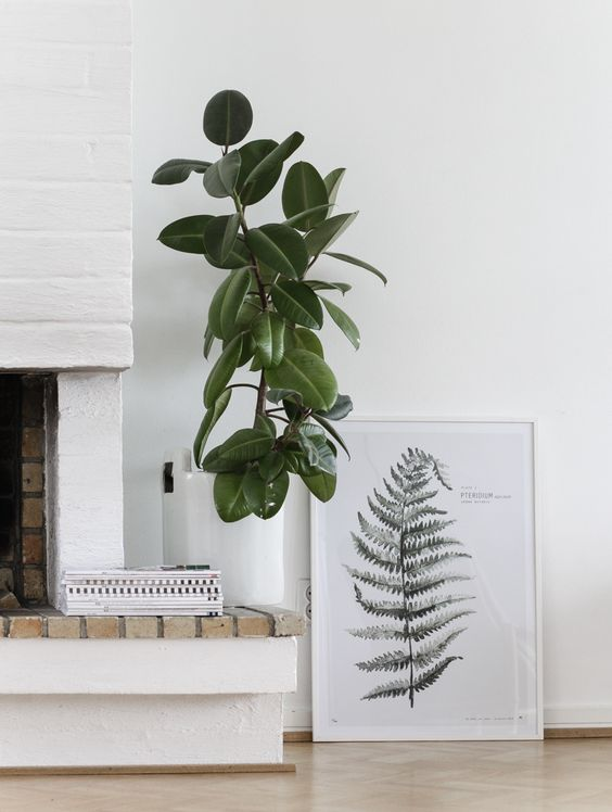 Urban Botanic / Plate 1 print from My Deer Art Shop. Signed and numbered // Photo by Minna Jones: