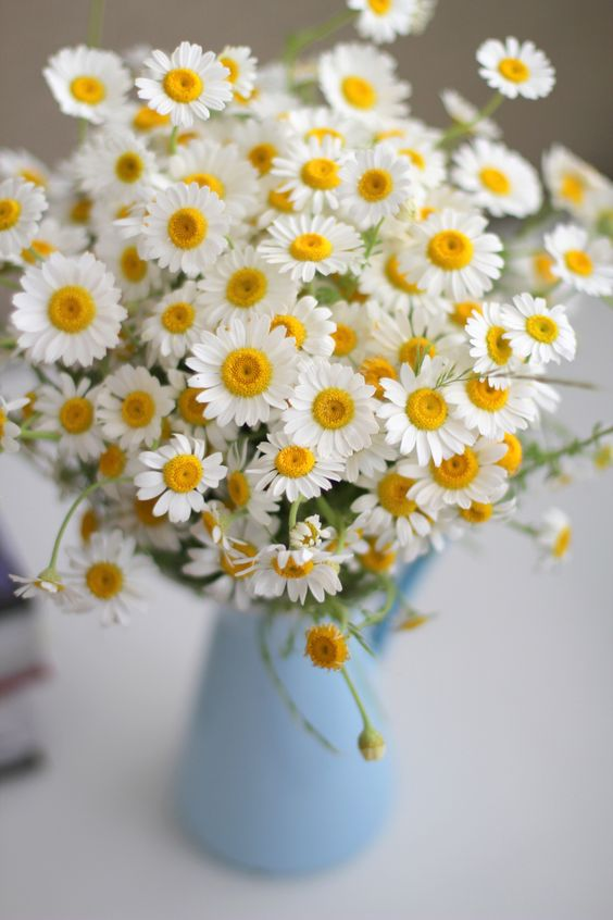 Roadside flowers can look perfectly polished indoors. Harvest several dozen daisies and create an overflowing bouquet for the kitchen.: