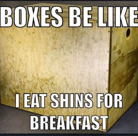 Box Jumps ugh gotta love the mental block!