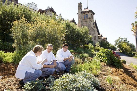 Culinary Institute of America at Greystone (St Helena CA)