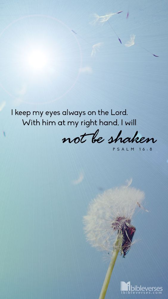 I keep my eyes always on the Lord. With Him at my right hand, I will not be shaken....Psalm 16:8<3