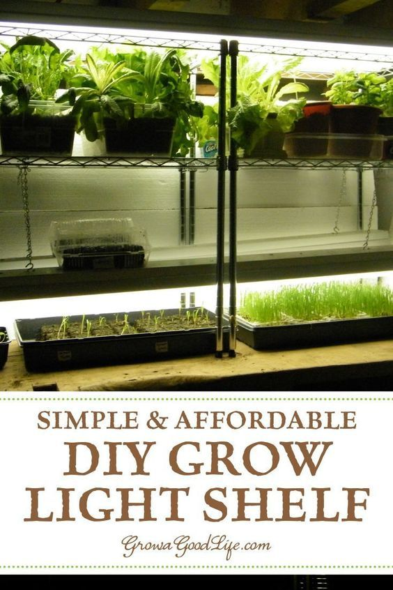 Build A Grow Light System For Starting Seeds Indoors Indoor