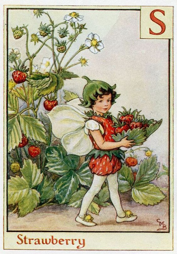 This beautiful Strawberry Alphabet Flower Fairy Vintage Print by Cicely Mary Barker was printed c.1940 and is an original book plate from an early Flower Fairy book. Cicely Barker created 168 flower fairy illustrations in total for her many books: