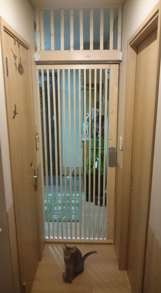 Kanecomimi 玄関の猫脱走防止ドア 2号機完成 エコ引き戸 Diy リノベーション 猫 玄関 猫 引き戸 Diy