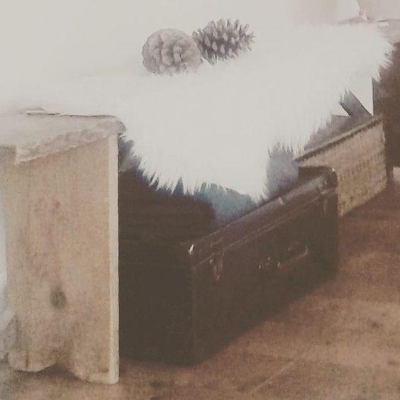 #herfst #autumn #dennenappels #bontje #brocante #bank #koffer #old #landelijkwonenstijl #landelijkwonen #home