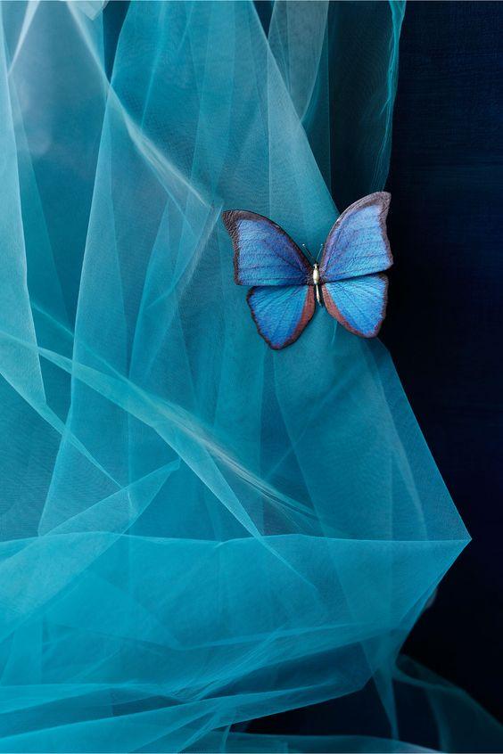 stunning blue things   Something Blue….   The Hummingbird Card Companyo pretty