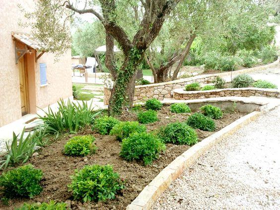 Jardin paysager en restanques nous avons structur ce beau terrain naturel complant d Image jardin paysager