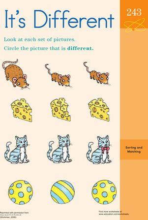 same and different worksheet | Homeschooling | Pinterest ...