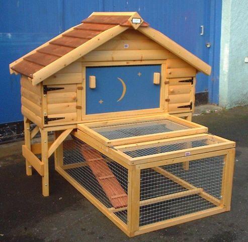 Casas para conejos maestro lobo casas para conejos - Casas para conejos enanos ...