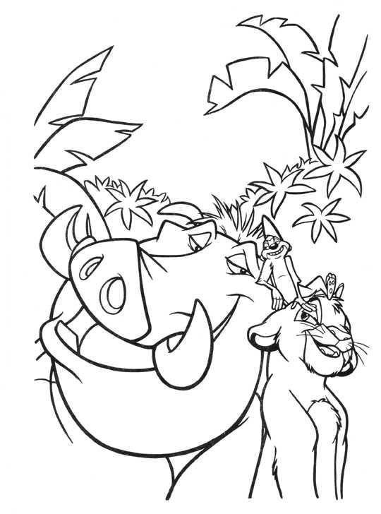 Desenhos Para Colorir O Rei Leao Paginas Para Colorir Da Disney
