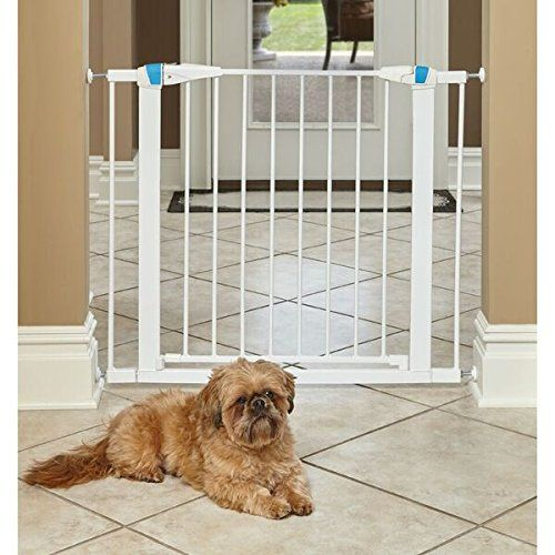 Midwest Homes For Pets Walk Thru Steel Pet Gate W Safety Glow