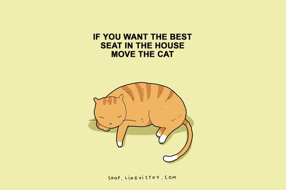 15 Illustrated Truths About Cats - https://feedly.com/i/subscription/feed/http://feeds.feedburner.com/BoredPanda: