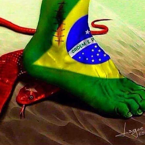 Fora Dilma!!