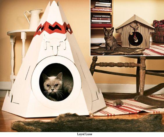 Cat bed ideas