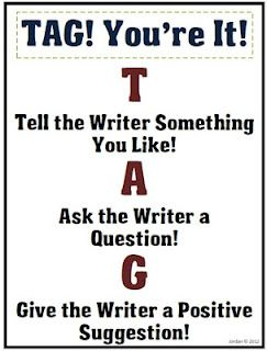 T Tell the reader something you like!  A Ask the writer a question.  G Give the writer a positive suggestion.