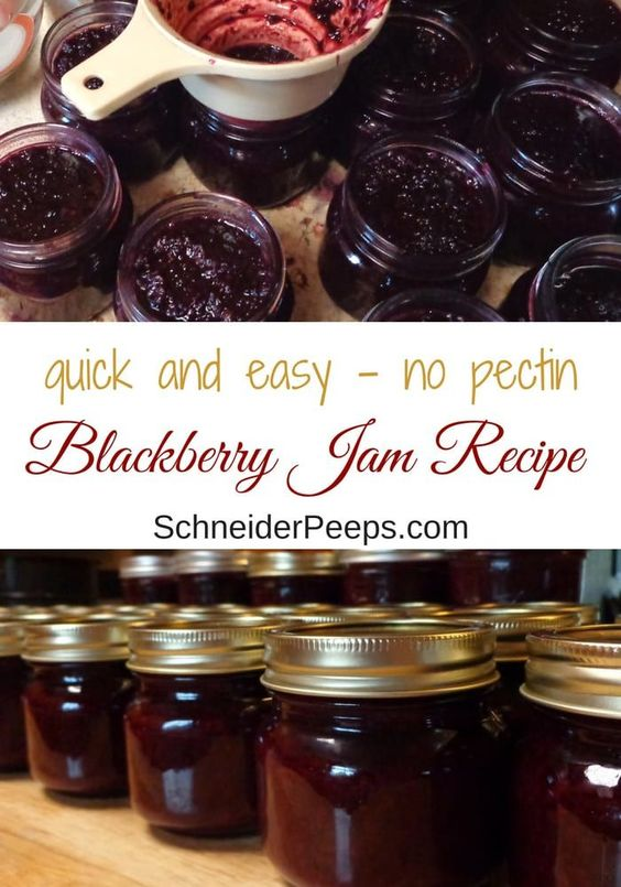 An Easy Blackberry Jam Recipe For Canning Or Freezing
