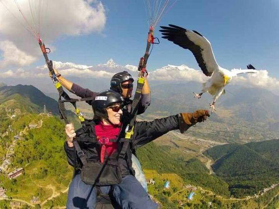 Skydiving Round The World Trip Surf Trip Paragliding