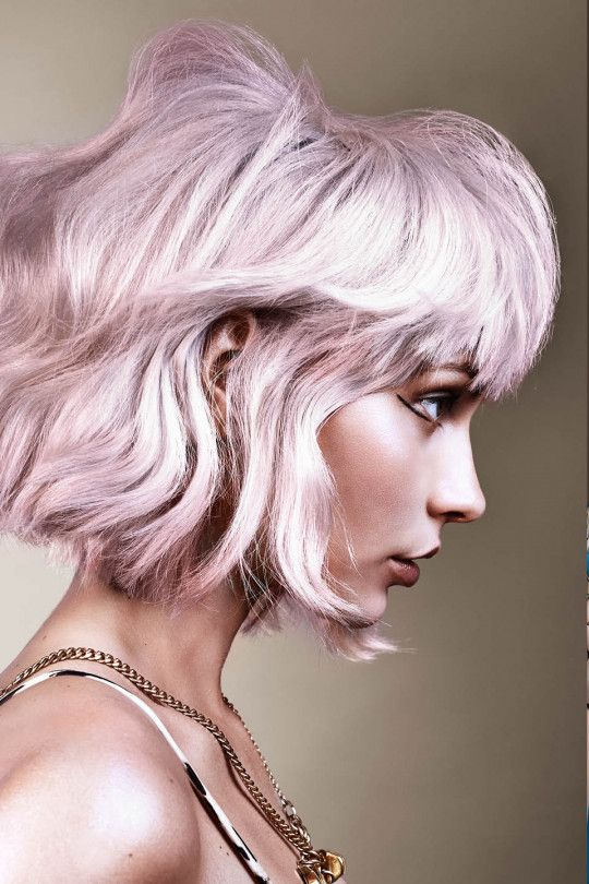 Style Finder Collections 2018 Legacy Toni Guy In 2020 Hair Inspiration Color Edgy Hair Hair Styles