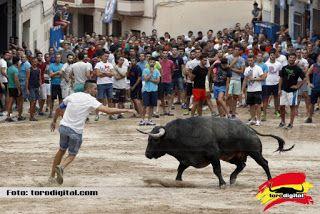 torodigital: Trágica tarde en la población de La Vilavella