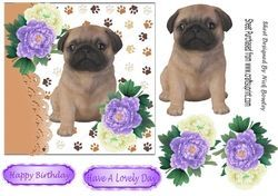 Cute Pug Puppy With Purple White Peonies 7x7 Cutepugpuppies With